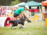 Agility high time part 1: European Open 2014, Hungary