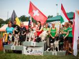 Agility high time, part 2: Border Collie Classic 2014, Slovakia